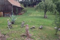 20150724_mexx_im_Wald_006